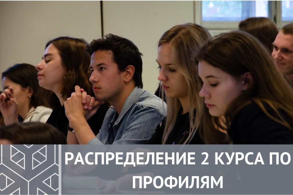 Распределение 2 курса бакалавриата по профилям обучения